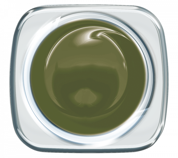 Colour UV Gel Vintage Green 926