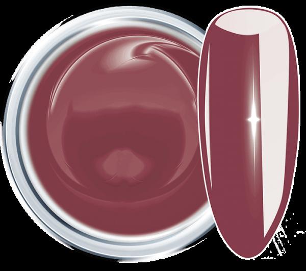 Colour UV Gel Passion Merlot 846