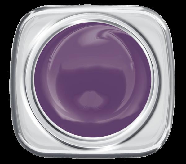 Colour UV Gel Velvet Violet 907